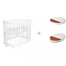 Кроватка-трансформер Forest Lavatera 6 в 1 (колесо) с матрасами круглым Малышок Классик и овальным Дрема Классик