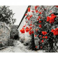 Molly Картина по номерам Красные розы на каменной стене 40х50 см