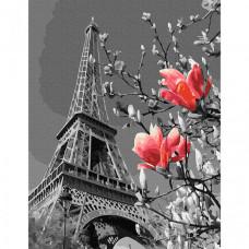 Molly Картина по номерам Весна в Париже 30х40 см