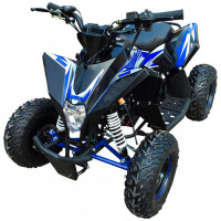 Motax Квадроцикл бензиновый Gekkon 70cс 1+1