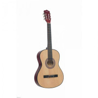 Музыкальный инструмент Terris Классическая Гитара TC-3801A NA