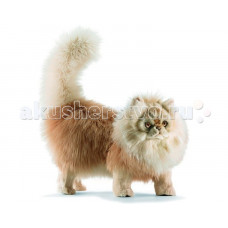 Мягкая игрушка Hansa Персидский кот Табби рыже-белый 70 см