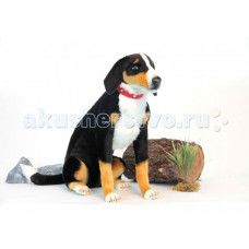 Мягкая игрушка Hansa Собака Аппенцеллер сидящий 66 см
