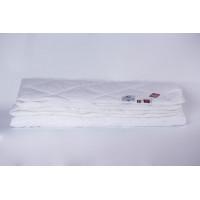 Одеяло German Grass 95C теплое 200х220 см