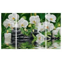 Schipper Картина по номерам Триптих Цветы Wellness-Oase 50х80 см